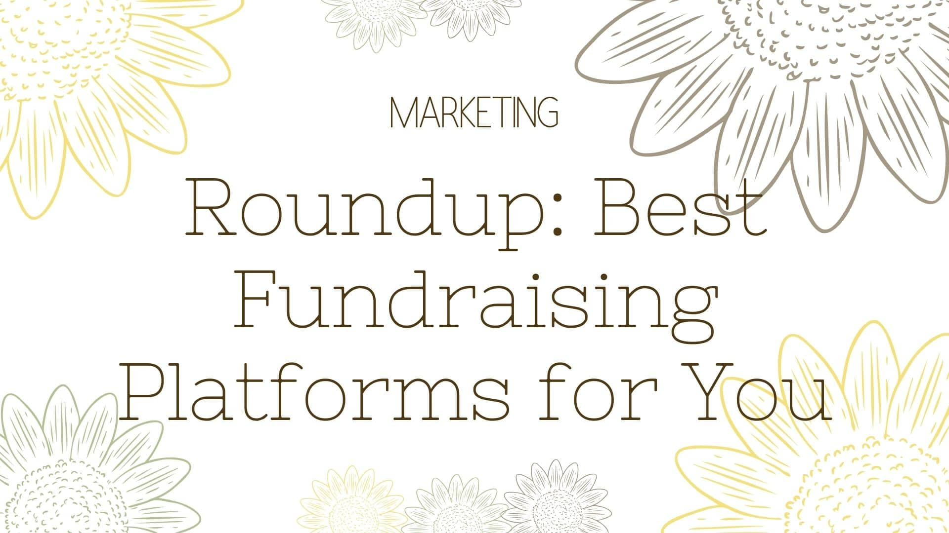 Roundup Best Fundraising Platforms for You
