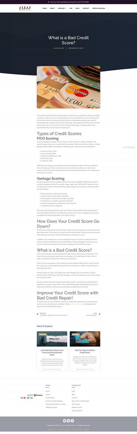LEAF Credit Solutions - Blog - What is a Bad Credit Score-min