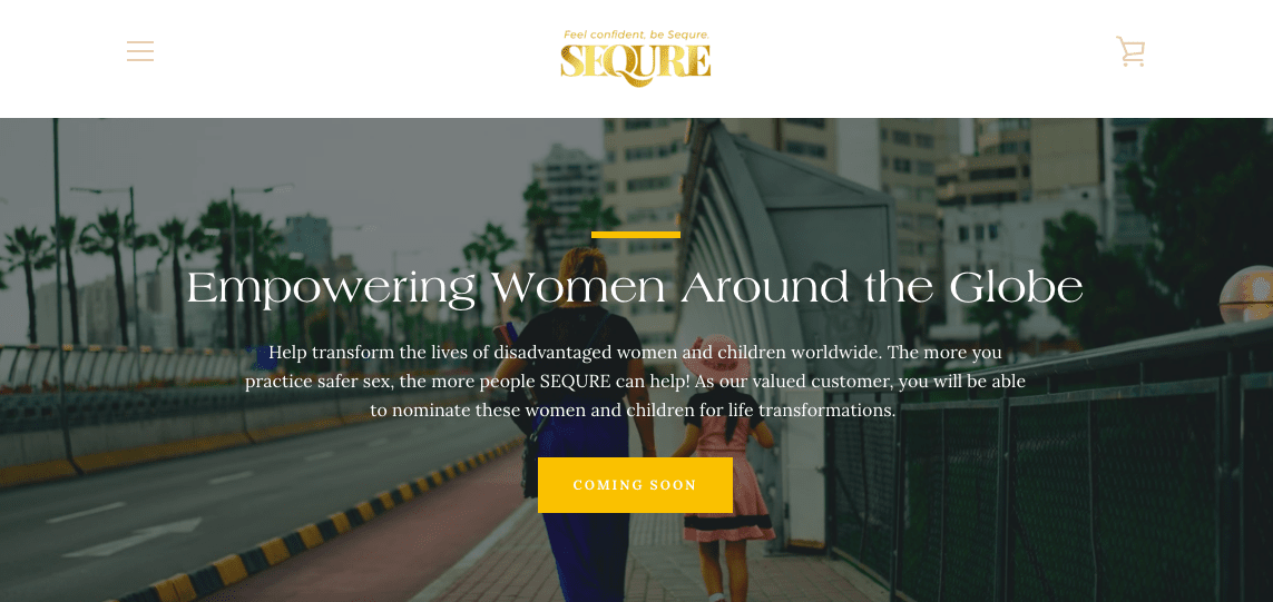 Sequre Website Screenshot Six