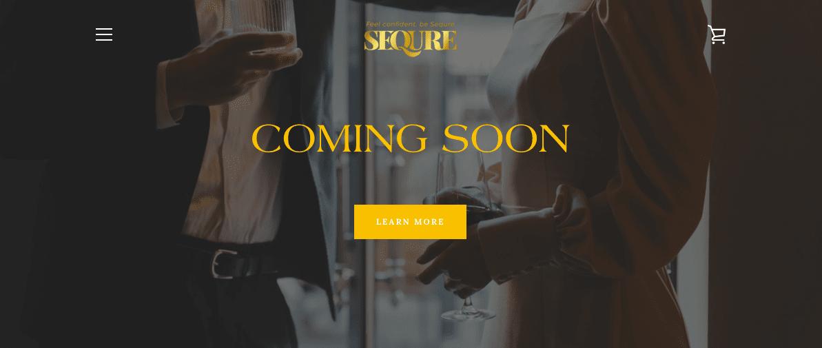 Sequre Website Screenshot