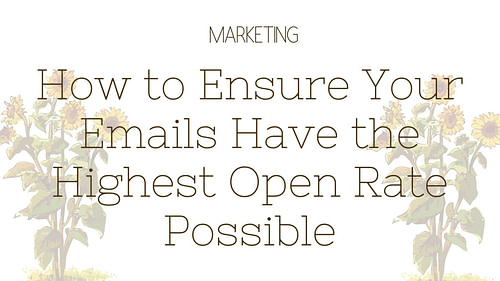 How to Ensure Your Emails Have the Highest Open Rate Possible